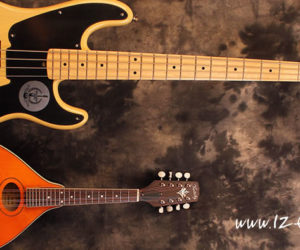 All About A Fretted Instrument's Scale Length