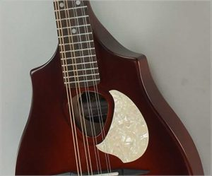 Seagull S8 Mandolin - The Twelfth Fret