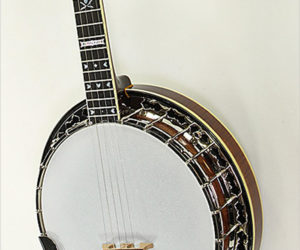 ❌SOLD❌ Stelling Sunflower 5-String Banjo, 2013