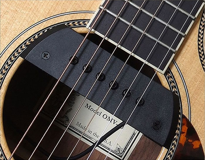 Sunrise S-1 LR Pickup System - The Twelfth Fret