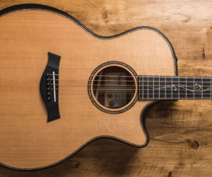 Taylor Guitars Builder's Edition Model Featuring V-Class Bracing