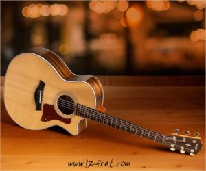 Enter the Fall for Ovangkol 414ce Giveaway - WIN A New Taylor 414ce Guitar