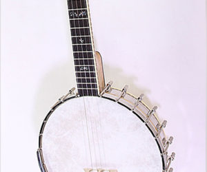 SOLD!  Wildwood Troubador Long Neck 5 String Banjo, 2006