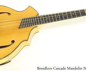 Breedlove Cascade Mandolin Natural 2008