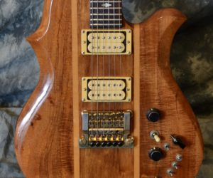 BC Rich Seagull 1980 (Consignment) SOLD