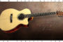 2017 G W Barry 30-12 OM Steel String Guitar  SOLD