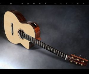 G.W. Barry 000 Plus in Brazilian Rosewood and Adirondack Spruce SOLD