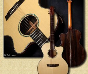 G.W. Barry Concert Model: Ziricote/ Engelmann/ Snakewood Sold