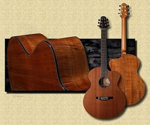 Bourgeois DBJC Koa SOLD Discontinued