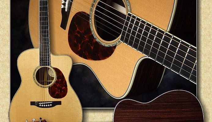 Bourgeois_JOMC_guitar_Jn07