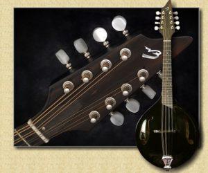 Breedlove Oregon Mandolin