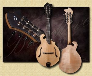 Breedlove Quartz FF Mandolin