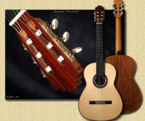 No Longer Availble:  Cervantes Concert M Millenia Guitar