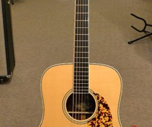 Collings CW Indian  - SOLD