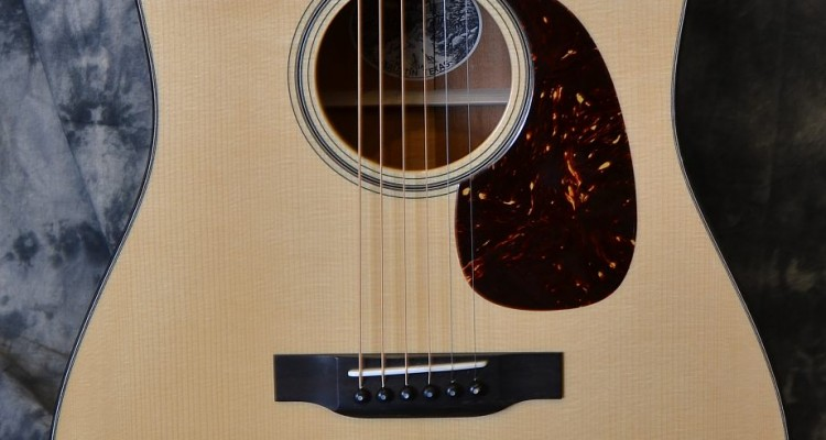 Collings_D1A_2010C_top