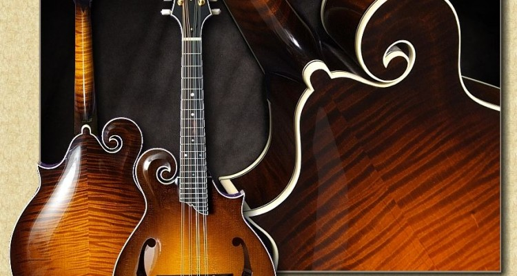 Collings_MF5_mandolin_Al8