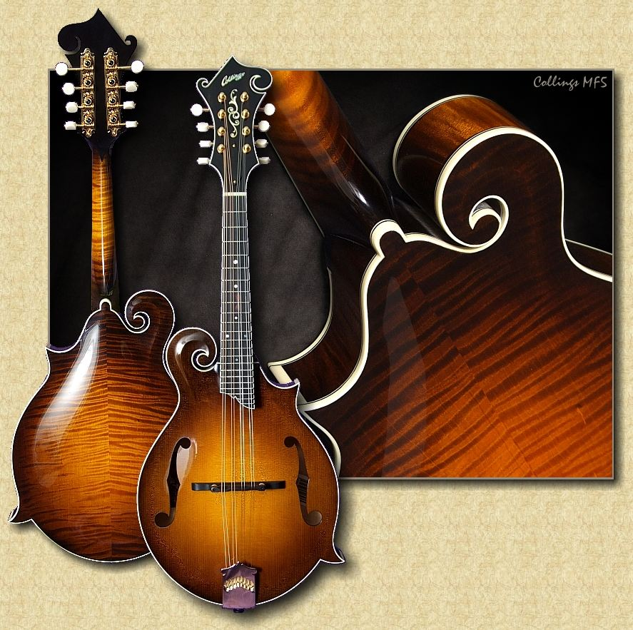 collings mf5 f style mandolin. Black Bedroom Furniture Sets. Home Design Ideas