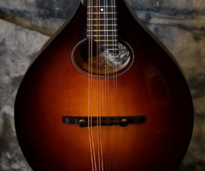 Mandolins | - The Twelfth Fret • Guitarists' Pro Shop