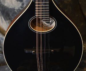 NO LONGER AVAILABLE!!! Collings MTO Blackface Mandolin