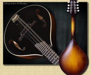 Collings Custom MT Blackface Mandolin