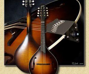 No Longer Availble:  Collings Custom MT Mandolin