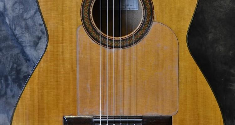 Contreras_Flamenco_1964C_Top