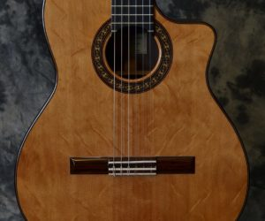 DeJonge Cutaway Classical 1981 (Consignment) SOLD