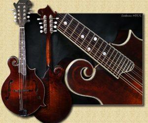 Eastman MD515 F-style Mandolin