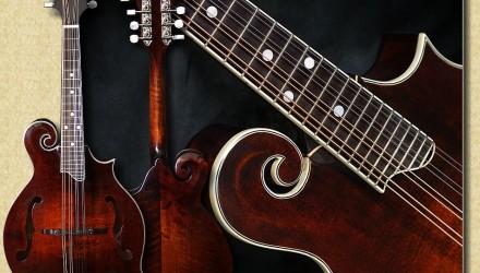 Eastman_MD515_mandolin