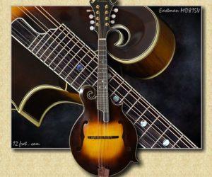 Eastman MD815V Varnish Mandolin