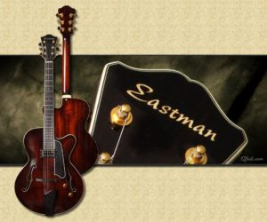 Discontinued!  Eastman T145 SM