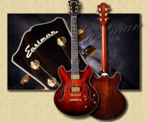 NO LONGER AVAILABLE!!! Eastman T185MX