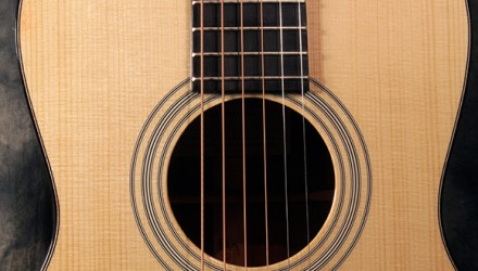Eastman_e10P_top_detail1