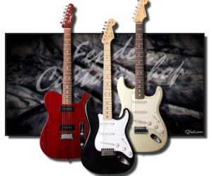 Fender Custom Shop Guitars (Used and Consignment) No Longer Available