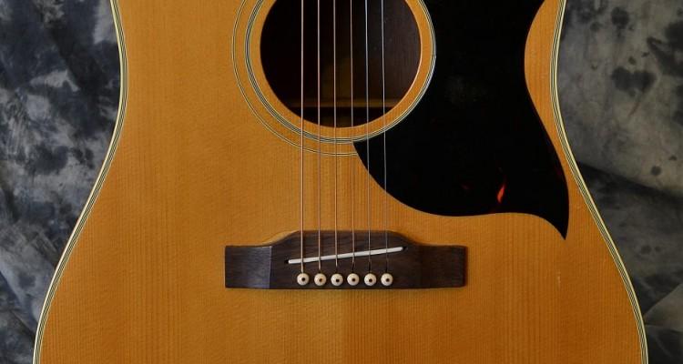 Gibson_SJN_1965C_top