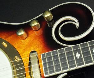 Left Handed GoldTone EBM-5 Solidbody Electric Banjo