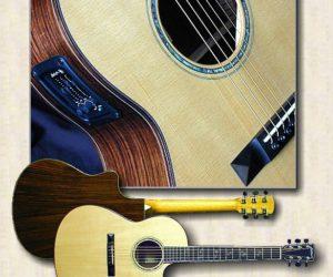 Larrivee Guitars : LSV-11 Fingerstyle SOLD