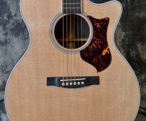 Martin GPCPA3 2010 (Consignment) SOLD