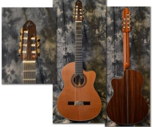 Raines Master Series 7 string Classical