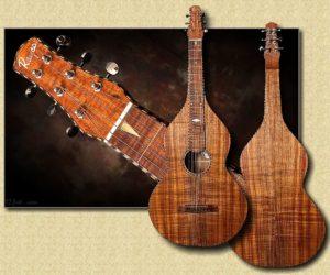 Rayco Weissenborn Style Hawaiian Guitar: Master Grade Koa