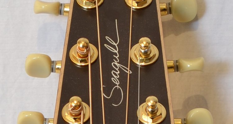 Seagull_SWS-Rosewood-Sale_headstock