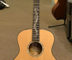 Taylor GS Ltd 2011(Consignment) SOLD