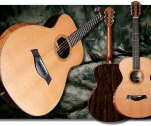 Taylor BTO Guitars