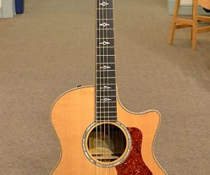 Taylor 814ce Ltd 2006 (Consignment) SOLD