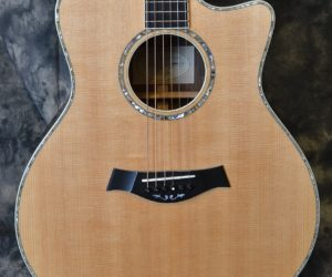 Taylor 916ce SOLD!