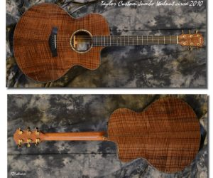 Taylor Custom Jumbo Walnut 2010 (Consignment) SOLD