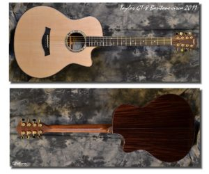 Taylor GT-8 Baritone 2011 (Consignment) - SOLD