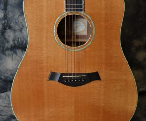 Taylor W-10 2001 (Consignment) SOLD