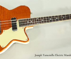 SOLD! 2010 Joseph Yanuziello Electric Mandolin