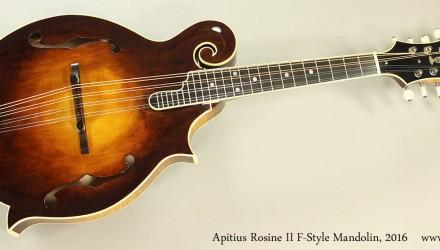 Apitius-Rosine-II-F-Style-Mandolin-2016-Full-Front-View